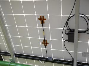 Cảm biến đo nhiệt độ bề mặt phía sau tấm pin mặt trời model CS240
